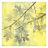 Fluttering Maple II Giclee Print by Jennifer Goldberger