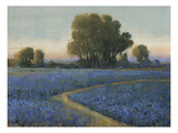 Blue Bonnet Field I Premium Giclee Print by Tim O'toole
