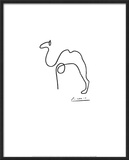 The Camel Prints by Pablo Picasso