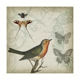 Cartouche and Wings I Print by Jennifer Goldberger