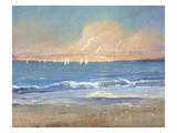 Sailing Breeze I Premium Giclee Print by Tim O'toole