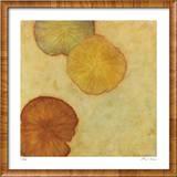 Sienna Lake 2 Limited Edition Framed Print by Lynn Basa