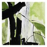 Chris Paschke - Forest View 2 Digitálně vytištěná reprodukce