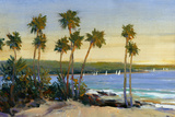 Distant Shore II Print by Tim O'toole