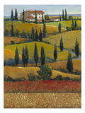 Hilltop Villa II Prints by Tim O'toole