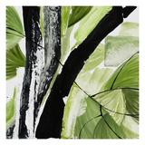 Chris Paschke - Forest View 4 Digitálně vytištěná reprodukce