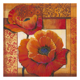 Poppy Pattern II Premium Giclee Print by Tim O'toole