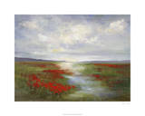Red Poppy Field Premium Giclee Print by Sheila Finch