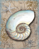Nautical Treasures III Plakater af Donna Knold