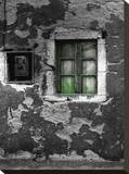 Green Window 2 Stretched Canvas Print by Dale MacMillan