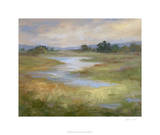 Hidden Meadow Premium Giclee Print by Sheila Finch