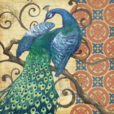 Peacock's Splendor II Art by Paul Brent