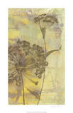 Dandelion Dance II Limited Edition by Jennifer Goldberger