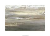 Gray Mist II Premium Giclee Print by Ferdos Maleki