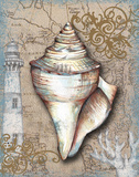 Nautical Treasures I Poster by Donna Knold