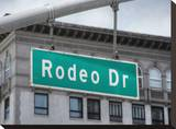 Rodeo Drive 2 Stretched Canvas Print by Dale MacMillan