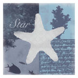 Beach Star Poster by Lauren Gibbons