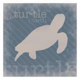 Turtle Definition Poster van Lauren Gibbons