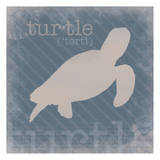 Turtle Definition Posters by Lauren Gibbons