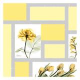Mondrian Flowers 1 Prints by Albert Koetsier