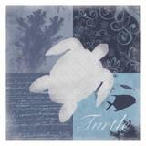 Beach Turtle Poster van Lauren Gibbons