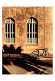 Brown Prints by Scott Cushing
