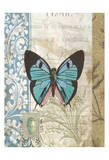Butterfly Blue Posters by Tammy Repp