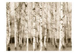 Sepia Timber Prints by Taylor Greene