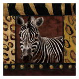 Zebra Bordered Art by Jace Grey
