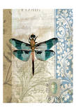 Dragonfly Blue Prints by Elizabeth Jordan