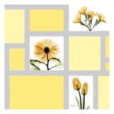 Mondrian Flowers 2 Prints by Albert Koetsier