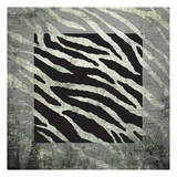 Animal Instinct Zebra Print by Kristin Emery