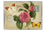 Vintage Butterfly Postcard I Prints by Taylor Greene