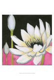Bliss Lotus III Prints by Jodi Fuchs