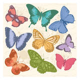 Colorful Butterflies Full Prints by Jace Grey