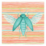 Summer Stripe Beetle 1 Poster by Nicole Tamarin