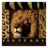 Lion Bordered Print by Jace Grey