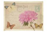 Vintage Butterfly Postcard III Prints by Taylor Greene