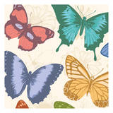 Colorful Butterflies Prints by Jace Grey