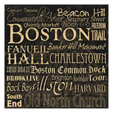 Boston Posters by Carole Stevens