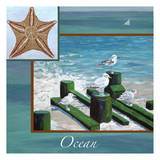 Ocean Starfish Posters by Donna Sinisgalli