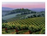 Chianti Dusk Giclee Print by Michael Swanson