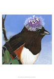 You Silly Bird - Donna Print by Dlynn Roll