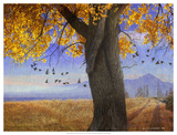 Yellow Cottonwood Giclee Print by Chris Vest