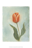Painted Tulips V Poster by Liz Nichols