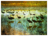 Cranes in Mist I Giclee Print by Chris Vest