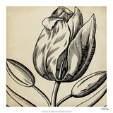 Graphic Floral VI Giclee Print by  Vision Studio