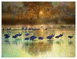 Cranes in Mist II Giclee Print by Chris Vest