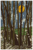 Longwood Giclee Print by Andrea Davis
