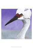 You Silly Bird - Abbe Plakat autor Dlynn Roll